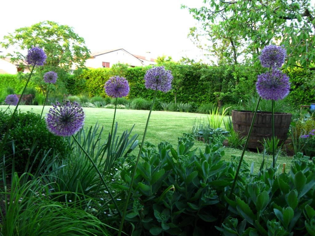 I giardini di strano ma verde - L orto in giardino ...
